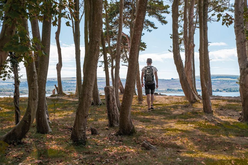 Wyspa Brownsea, szlaki piesze